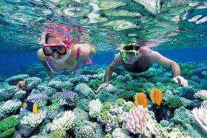 7 tour lặn ngắm dãy san hô đẹp nhất Việt Nam tại Phú Quốc