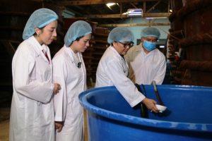 Agribank Phú Quốc thực hiện nhiệm vụ tiên quyết: Bảo vệ và phát triển thương hiệu quốc gia
