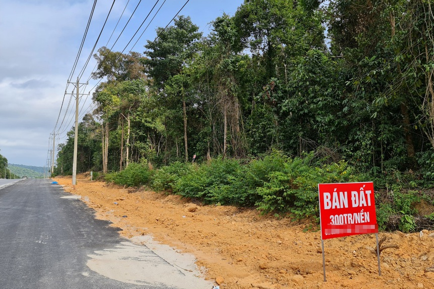 Nhiều tấm biển rao bán đất ven đường Gành Dầu - Dương Đông