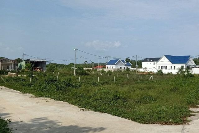 Nhiều dự án phân lô bán nền tự phát trên địa bàn xã Cửa Dương giờ đây cỏ mọc um tùm thế này