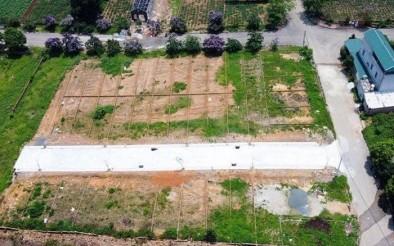 Nhà đâu tư cần có tìm hiểu kỹ trước khi xuống tiền mua đất tái định cư tại Phú Quốc để tránh rủi ro có thể xảy ra