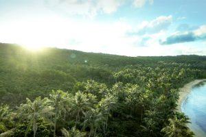 Xuất hiện không gian nghỉ dưỡng nhiệt đới tại thành phố Đảo Ngọc